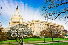 US Capitol Building by Raoul Pop, via Flickr