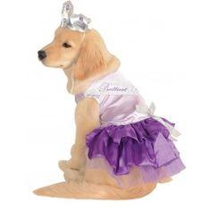 Pet Costume Prettiest Pooch Lg