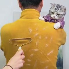Pet Hair Removal, Lint Remover, Car Upholstery, Old Clothes, Clothes Shops, Home Gadgets, Cool Inventions, Clothing Hacks, House Cleaning Tips