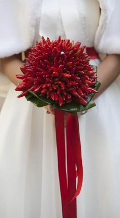 Unique Winter Bridal Bouquet Of: Spicy Red Chilli Peppers + Folded Green Aspidistra with Red Satin Ribbon Winter Bridal Bouquets, Bride Bouquets, Easter Flower Arrangements, Floral Arrangements, Christian Wedding Sarees, Vegetable Bouquet, Tulip Bouquet, Alternative Bouquet, Red Wedding