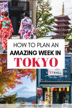 Tokyo Itinerary: 6 Days of Sightseeing and Hidden Gems Tokyo Japan Travel, Japan Travel Guide, Asia Travel, Tokyo Trip, Kyoto Japan, Japan Trip, Japan Honeymoon, Places In Tokyo, Tokyo Restaurant
