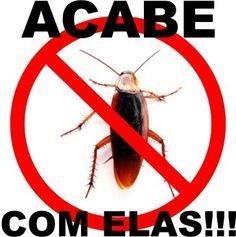 How to eliminate cockroaches- Como eliminar as baratas Have cockroaches invaded your home? They are often found in trash, sewers and pipes so it is important that you eliminate them from your home as soon as possible. It has various shapes for the … -