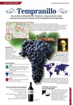 Which Wines Should Be Chilled Refferal: 1296167402 Rioja Wine, Wine Facts, Wine Coolers Drinks, Wine Varietals, Wine Folly, Chateauneuf Du Pape, Wine Vineyards, Wine Education, Spanish Wine