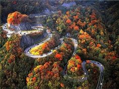 "Autumn Switchbacks, Chattanooga, Tennessee. Driving the ""W Road"" is an adventure during any time of the year!"