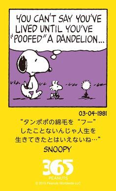 Importance of poofing a dandelion