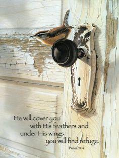 Psalm 91 v 4.