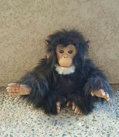 Fur Real Chimp ~ interactive Animatronic. He makes chimp noises ~ acts real _#frurealchimp