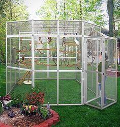 OutdoorBirdSupplies | huge-outdoor-bird-cage-outdoor-aviary-outdoor-bird-enclosure.jpg: Aviary Ideas Birdcages Pet Bird Cage Bird Cages Cockatiels Birds Animal #aviariesideas