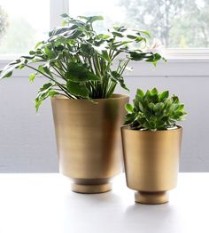 House Doctor | Brass Planter