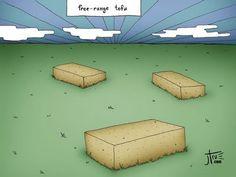 free range tofu, haha #vegetarian #vegan #humor