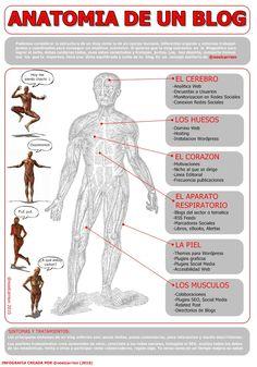 Infografias interesantes: Anatomia de un blog...