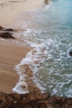 Stirring up the sand among the rocks
