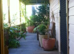 My verandah.  I don't actually sit out here very often but it would be a nice place to sit if I did.