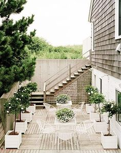 Stunning courtyard lined with potted trees