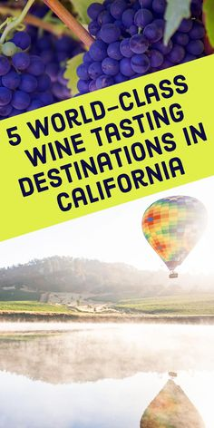 Visiting California on a wine tasting trip? These are the state's five best spots for vineyards, wineries, and tasting rooms.