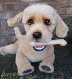 DENNY a large Retriever puppy dog By Brigitte Crowe - Bear Pile