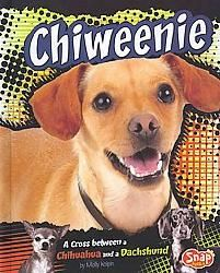 """{Chiweenie !!} my pup is a Chiweeniepug, wonder if there's a book for that """"breed""""? ;)"""