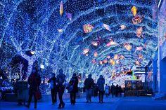 Christmas in Beijing, China