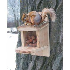 Det är inte bara fåglar som behöver mat på vinter. Kombinera nytta med nöje och sätt upp en Matholk för Ekorrarna och se dem knäcka nöten med att få upp locket för att komma åt godsakerna http://www.smartasaker.se/matningsholk-for-ekkorrar.html