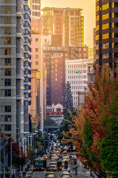 Fall Sunset in the City~  Seattle scene from Capitol Hill~ by Conor Musgrave