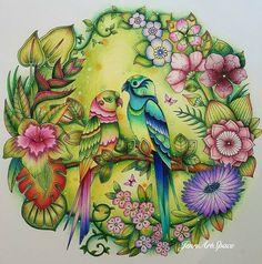 The love birds💕💕. Magical Jungle by Johanna Basford. #magicaljungle #johannabasford #artecomoterapia #bayan_boyan #livredecoloriage #desenhoscolorir #coloriageantistress #kolorowamafia #desafioscoloridos #adultcoloringforum #forum_da_criatividade #divasdasartes #boracolorirtop #jardimcolorido #nossojardimsecreto #majesticcoloring #prismacolorpencils #prazeremcolorir #colorindolivrostop #livrosdecolorirparaadultos @coloring_secrets #coloring_secrets #arte_e_colorir #docepapelatelier #大人の塗り絵…