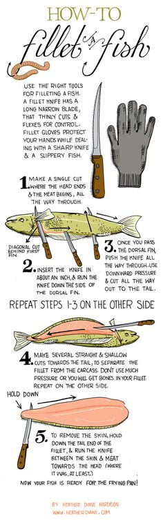 Infographic On How To Fillet A Fish - Tap The Link Now To Find Gadgets for Survival and Outdoor Camping Camping Survival, Survival Tips, Survival Skills, Survival Food, Survival Fishing, Outdoor Survival, Survival Knife, Slippery Fish, Gone Fishing