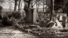 ALTER FRIEDHOF (Old Cemetery). Germany, Offenbach an Main. November 2014. <3