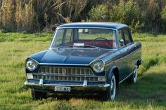 1965 Fiat 1500L Maintenance/restoration of old/vintage vehicles: the material for new cogs/casters/gears/pads could be cast polyamide which I (Cast polyamide) can produce. My contact: tatjana.alic@windowslive.com