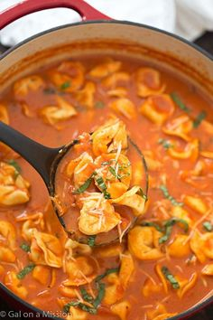 One-Pot Tomato and Basil Tortellini Soup - Hearty, comforting, flavorful and a quick weeknight meal! So much easier than soup in the crock-pot! Tomato Basil Soup, Tortellini Soup, Bonn, Soup Recipes, Vegetarian Recipes, Dinner Recipes, Slow Cooker Recipes, Crockpot Meals, Dairy Recipes
