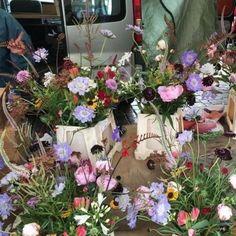 Shots, Floral, Flowers