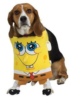 SpongeBob Large Squarepants Pet Costume - http://www.thepuppy.org/spongebob-large-squarepants-pet-costume/