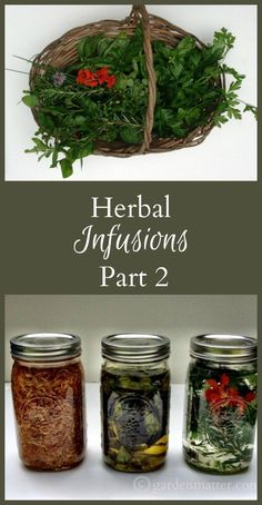 Learn how to make herbal infusions by combining oils and vinegar with herbs from your backyards. Use them in cooking, homemade cosmetics and more.