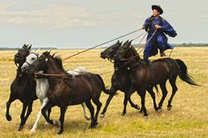 The Puszta (Hungary). 'The unending plains of myth and memory are waiting to be explored in Kiskunság National Park and Hortobágy. Ride yourself, or watch as Hungarian cowboys ride with five horses in hand at a staged show.' http://www.lonelyplanet.com/hungary/sights/outdoors/kiskunsag-national-park