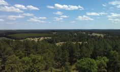 Atop the 30 ft observation tower at our national forest in Halsey, NE.