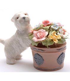 https://i.pinimg.com/236x/8c/76/09/8c7609690a9401d19a42264028203aef--flower-baskets-flower-pots.jpg