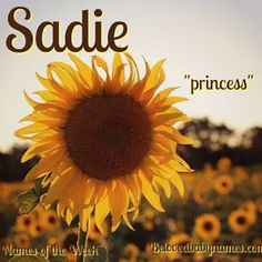 Beloved Baby Names: Names of the Week: Sadie and Granger - Parenting Cute Baby Names, Baby Girl Names, Boy Names, Cute Babies, Baby Kids, Family Names, Sadie Name Meaning, Names With Meaning, Life After Marriage