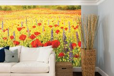 Available in 2 sizes -   L 300cm (wide) x 240cm (high) or XL 350cm (wide) x 280cm (high)    *Mural supplied in 1 roll of 6 easy to manage 500mm wide strips  (7 strips for XL)    * Printed on a quality non-woven wall covering    * Simply apply 'Paste-the-wall' wallpaper paste to the wall  (not supplied) and then hang each strip    * No horizontal joins to line up    * No overlap on joins    * Printed with UL ECOLOGO®    * GREENGUARD GOLD certified inks     Create a stunning feature wall in…