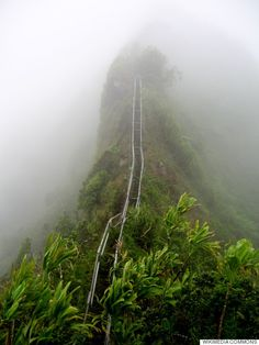 Ha'iku Stairs on the island of Oahu in Hawaii aka Stairway to Heaven. I'm going there next time I'm in Hawaii. Hawaii Vacation, Oahu Hawaii, Hawaii Travel, Vacation Spots, Hawaii Hikes, Visit Hawaii, Hawaii 2017, Kauai, Oh The Places You'll Go