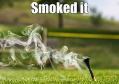 Golf ⛳️