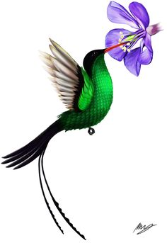 I am a professional artist creating a wide range of canvas prints and posters inked with my most beautiful, mesmerising and thought provoking artworks. Bird And Flower Tattoo, Flower Bird, Flower Tattoos, Tattoo Bird, Girly Tattoos, Tatoos, Jamaican Tattoos, J Birds, Humming Birds
