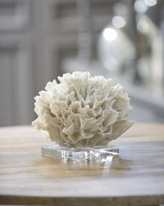 Simple & elegant  ribbon coral that could be used as a cocktail table center piece