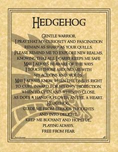 Hedgehog Prayer