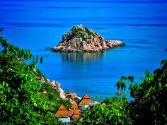 Daily Digital - Shark Island, Koh Tao