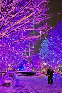7 best places to see Christmas light displays in the Asheville, North Carolina, area - including downtown & Winter Lights.