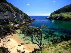 New Zealand: Great Barrier Island