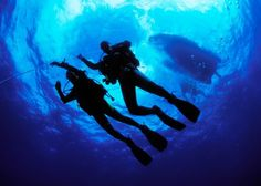 Looking for scuba diving in Kerala? Bond Safari is the official PADI certified scuba diving agency in Kerala, offering water sports activities like snorkeling and scuba diving in Kovalam. Best Scuba Diving, Scuba Diving Gear, Cave Diving, Beach Activities, Adventure Activities, Menorca, Scuba Diving Equipment, Diving Course, Snorkelling