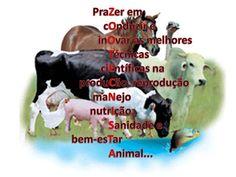 Mundo da Zootecnia