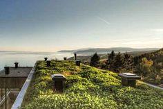 roof garden --> the sea