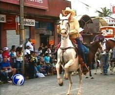 Móntese a caballo con nosotros y reviva el tope de Palmares desde adentro