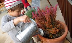 Little Earth Montessori - When the ordinary becomes extra-ordinary